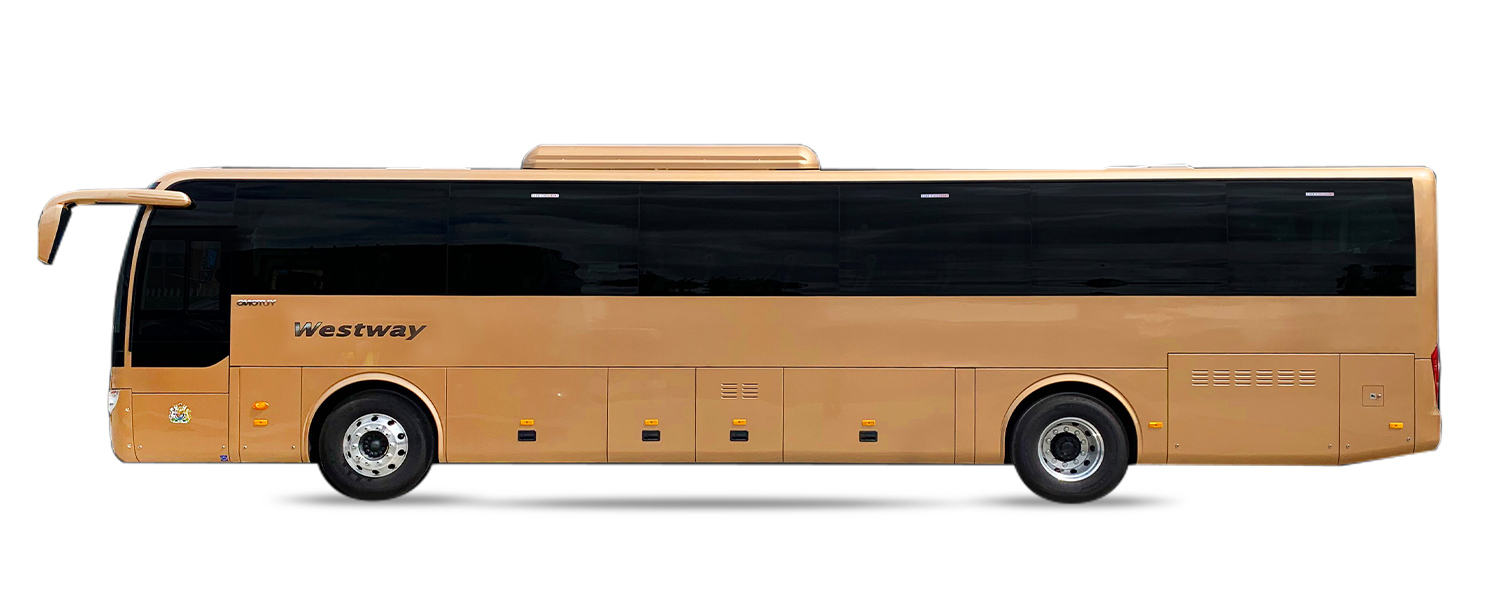 coach electric